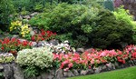 Planten en Tuinen