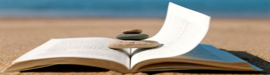 Vakantieboeken